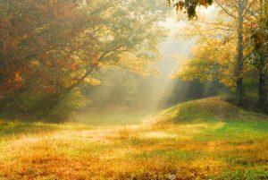 Vladari Ascendenta – izvori životne energije