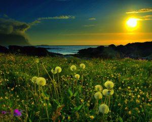 Sunce u Biku