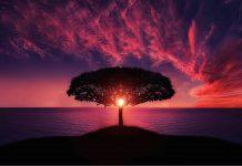 Sunce u Ovnu – početak proleća
